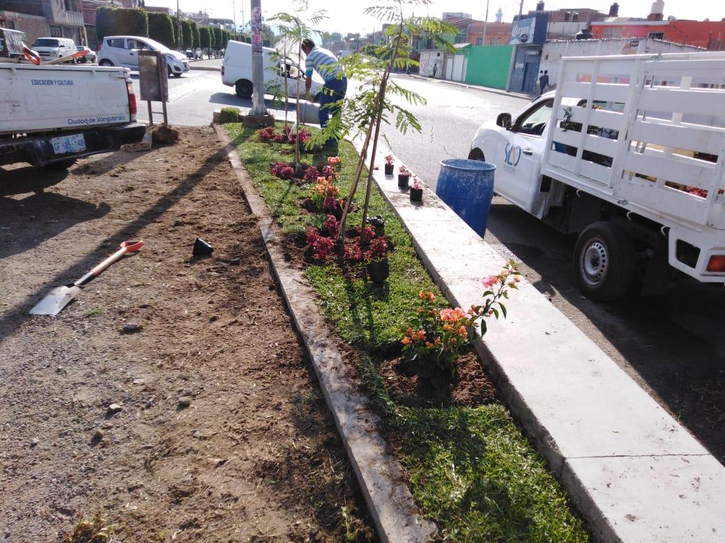 Continúa el colorido embellecimiento de áreas verdes