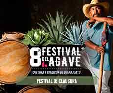 Invitan al 8° Festival del Agave en Silao